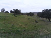 Territorio Extremadura
